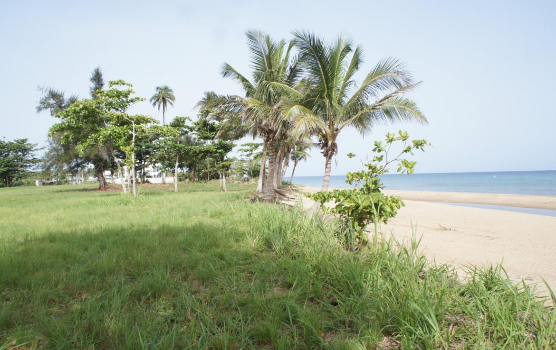 Puerto Rico Beachfront Property